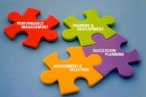 Competency-Based HR & Talent Management Systems