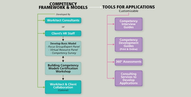 Components of competency framework process