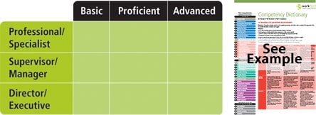 Competency Dictionary Example
